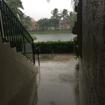 Rainfall during the Hurricane